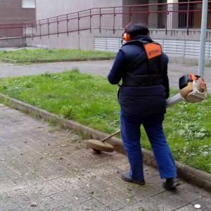 Limpieza de Jardines en Bilbao